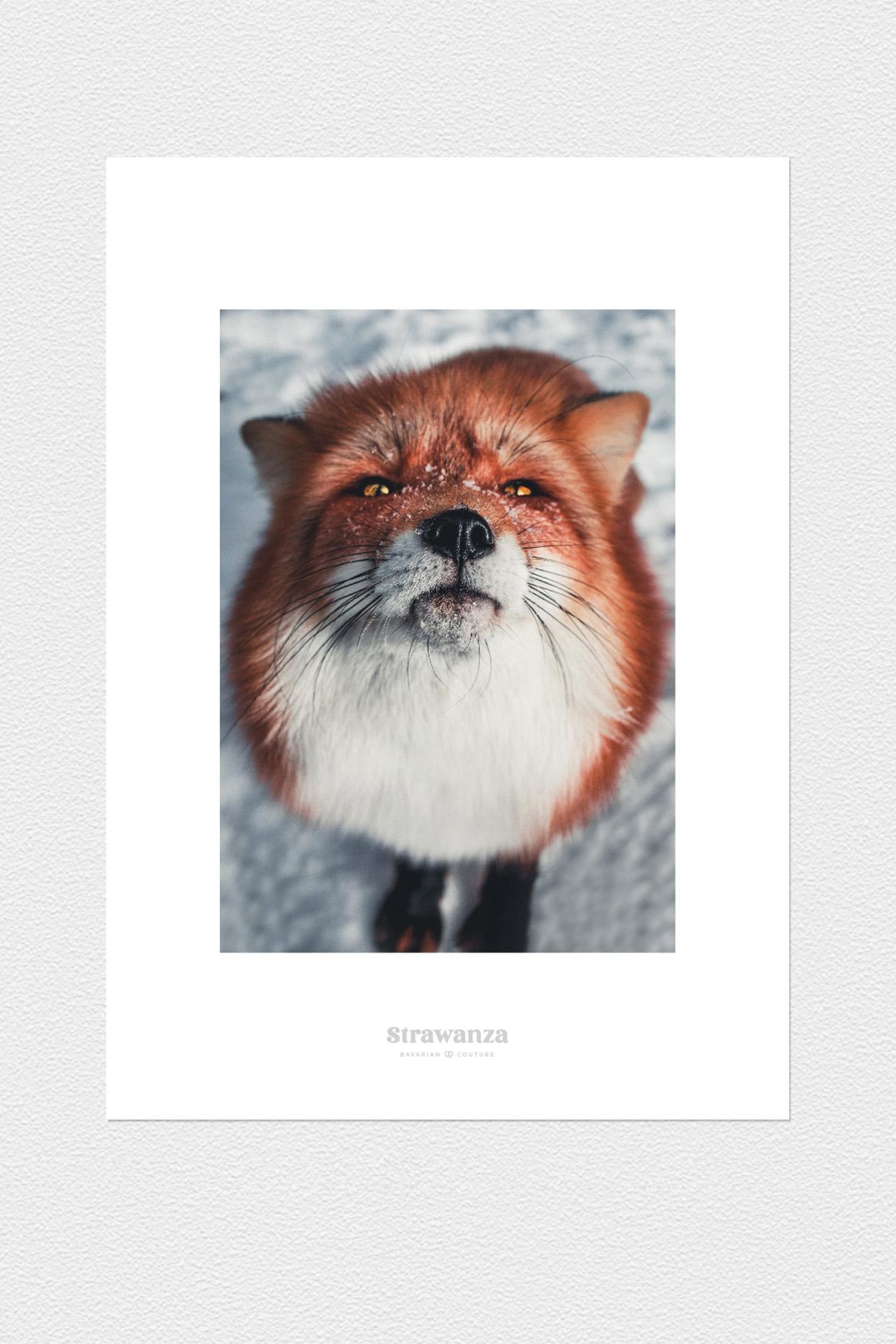 Fuxdeifeswuid Poster - A3